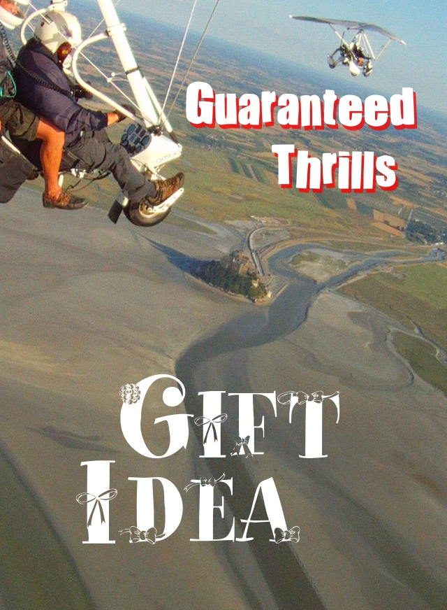Gift Idea: guaranteed thrills